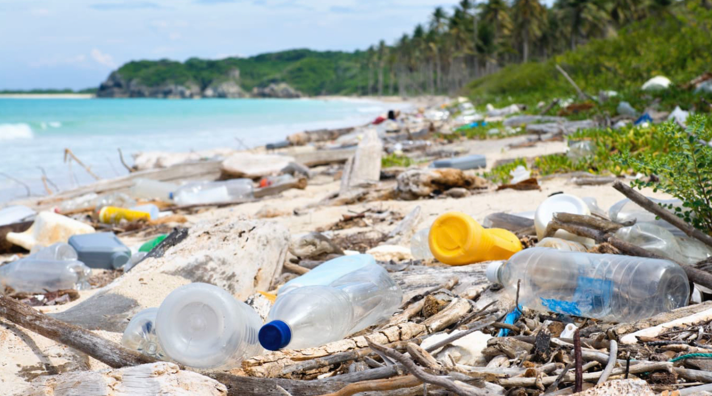 How Plastic Water Bottles Effect on the Environment